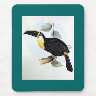 Gould - Osculant Toucan Mouse Pad