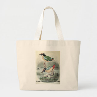 Gould - Pitta concinna Jumbo Tote Bag