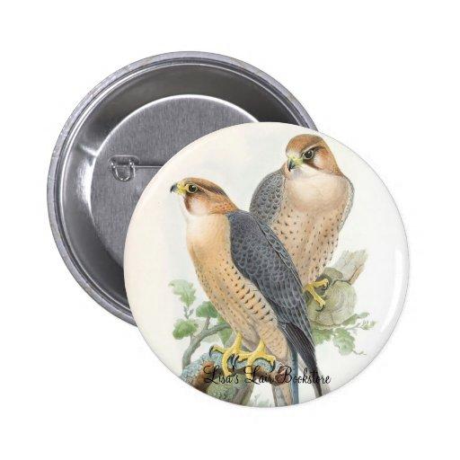 Gould - Red-Naped Falcon Bookstore Promo Pins