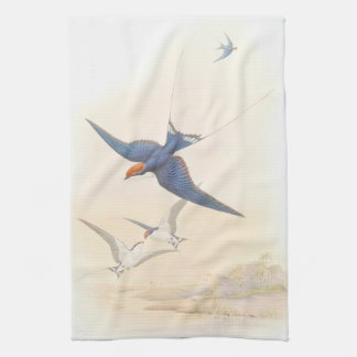Gould Swallow Birds Kitchen Towels