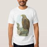 Gould - White-Tailed Eagle - Haliaetus albicilla Tee Shirt