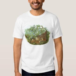 Gould - Woodcock - Scolopax rusticola Shirt