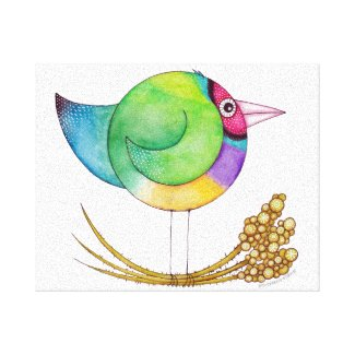 Gouldian Finch canvas