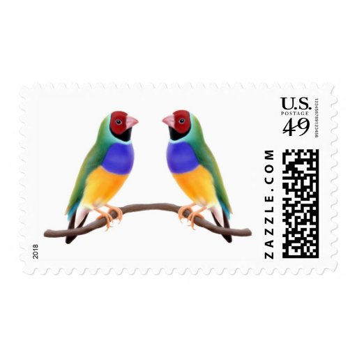 Gouldian Finch Friends Stamp