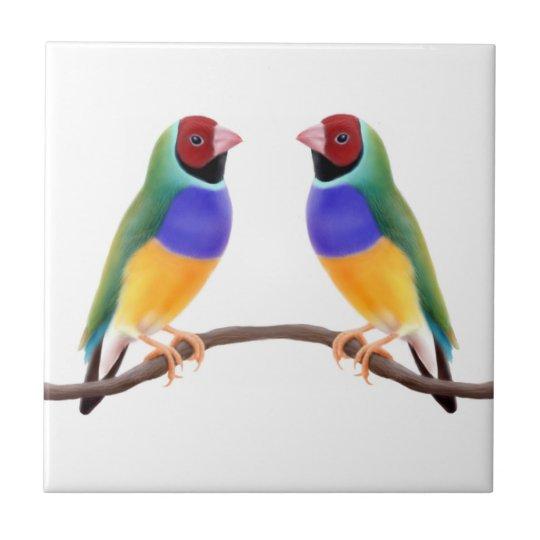Gouldian Finch Friends Tile