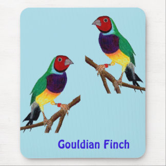 ~ Gouldian Finch ~ Original Art ~ Mouse Pad