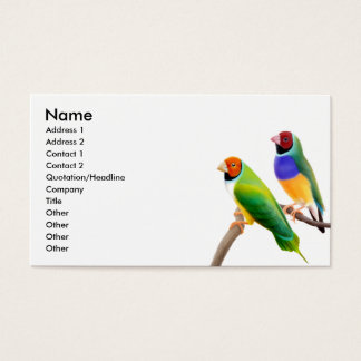 Gouldian Finches Business Card