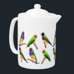 """Gouldian Finches Teapot<br><div class=""""desc"""">Original fine art design of different colorful Gouldian finches by artist Carolyn McFann of Two Purring Cats Studio printed on a quality porcelain teapot for finch fans.     See a few of our products below (click to go to that product) and visit our very artistic stores at:</div>"""