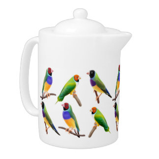 Gouldian Finches Teapot