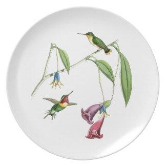 Goulds' Hummingbirds Plate