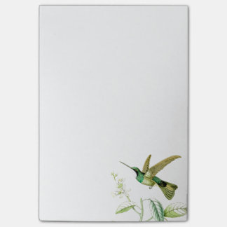 Goulds Hummingbirds Post it Notes Post-it® Notes