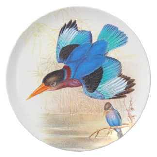Goulds Kingfisher Birds Dinner Plate