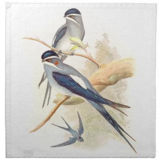 Goulds' Swallow Birds Cloth Napkins