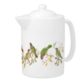 Goulds Tropical Birds Teapot
