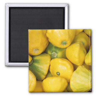 Gourd Themed 2 Inch Square Magnet
