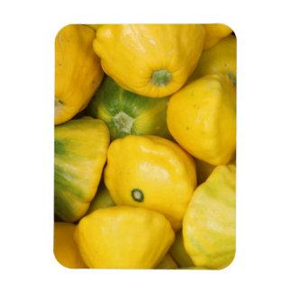"Gourds 3""x4"" Photo Magnet"