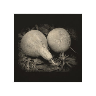 """""""GOURDS"""" 8 x 8 RUSTIC IMAGE ON WOOD Wood Wall Art"""