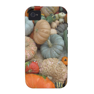 Gourds iPhone 4 Covers