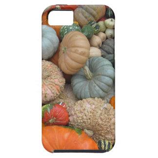 Gourds iPhone 5 Case
