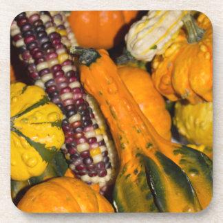 Gourds & Corn Assortment Drink Coaster