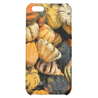 Gourds Galore!- case Case For iPhone 5C