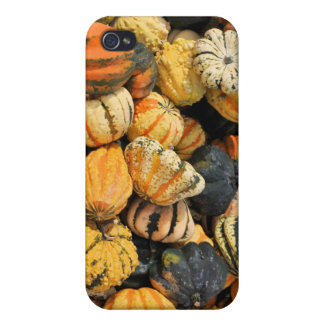 Gourds Galore!- case Covers For iPhone 4