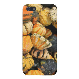 Gourds Galore!- case iPhone 5 Cases
