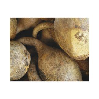 Gourds I Canvas Print