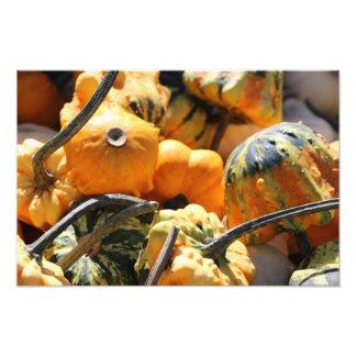 Gourds Photo Print