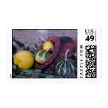 Gourds Postage Stamps