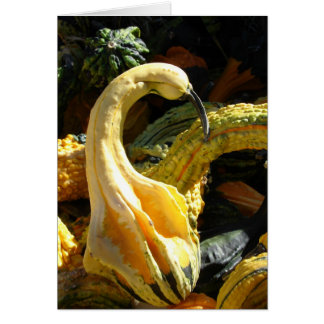 Gourds, Thanksgivng for Friend Card
