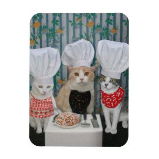 Gourmet Chef Kitties Rectangle Magnet