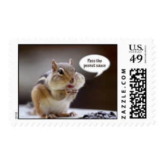 Gourmet Chef or Cook Chipmunk Photo Postage