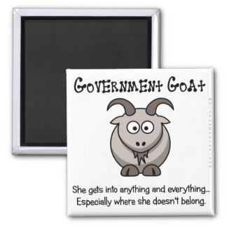 Government goes where it doesn't belong 2 inch square magnet