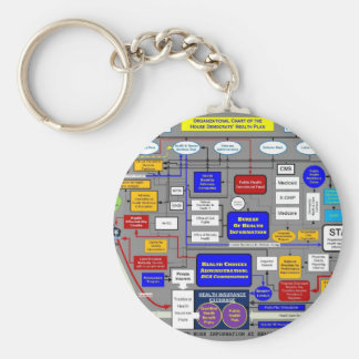 Government Health Care System Keychain