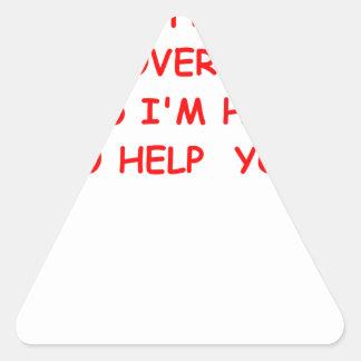 government triangle sticker