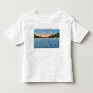 Govt. Free Camp Sites View of Lower Saranac Lake Toddler T-shirt