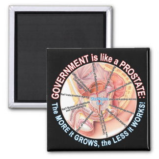 Gov't is like a Prostate 2 Inch Square Magnet