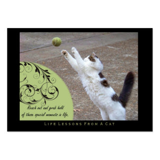 Grab Hold Life Lessons From a Cat ACEO Art Cards Business Card Templates