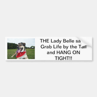 Grab Life by the Tail and HANG ON TIGHT! Car Bumper Sticker