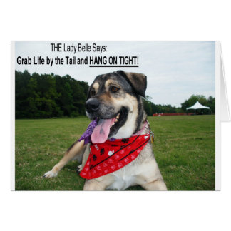 Grab Life by the Tail and HANG ON TIGHT! Card