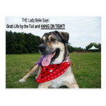 Grab Life by the Tail and HANG ON TIGHT! Post Card