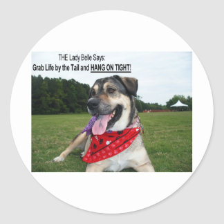 Grab Life by the Tail and HANG ON TIGHT! Classic Round Sticker
