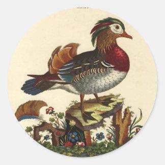 grabado antiguo del pájaro pegatinas redondas