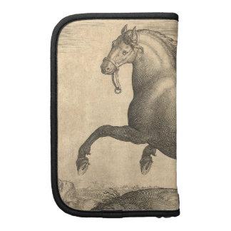Grabado antiguo elegante del caballo español planificadores