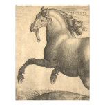 Grabado antiguo elegante del caballo español anuncio