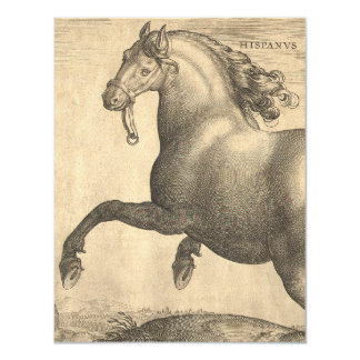 """Grabado antiguo elegante del caballo español invitación 4.25"""" x 5.5"""""""