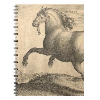Grabado antiguo elegante del caballo español libro de apuntes con espiral