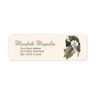 Grabado blanco de la magnolia de Catesby de la Etiquetas De Remite