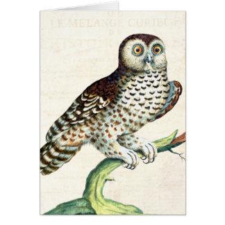 Grabado canadiense de la antigüedad del búho del tarjeta de felicitación